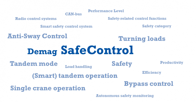 SafeControl_Word_Cloud